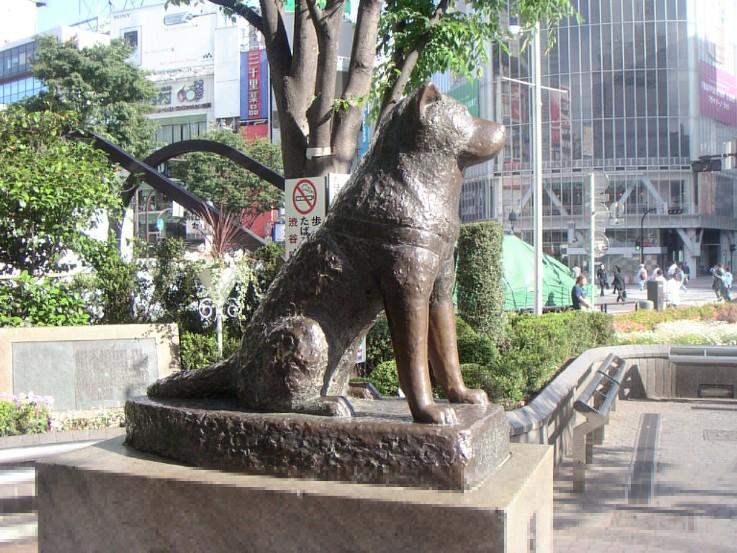 Hači bronzana statua