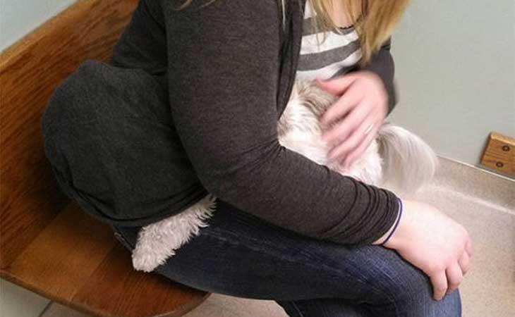 Pas se krije od veterinara