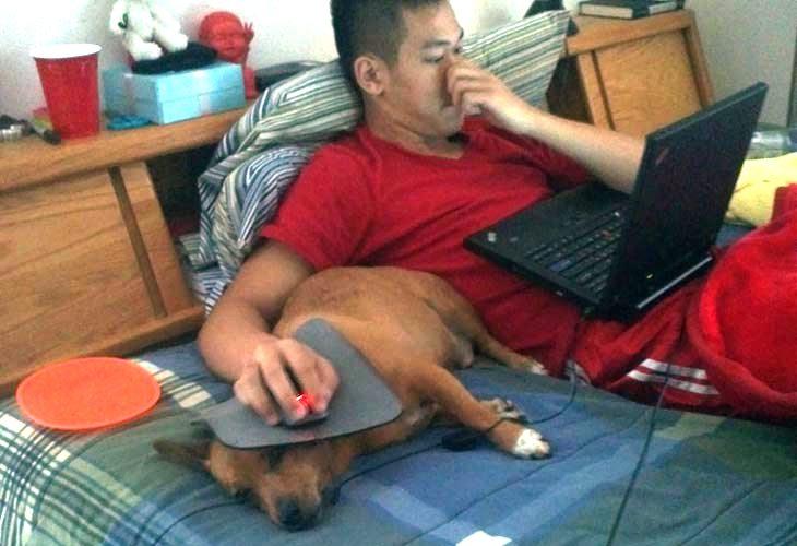 Pas lenčuga